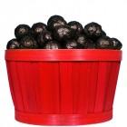 Panier d'Escargots de Bourgogne Chocolat noir praliné 2Kg